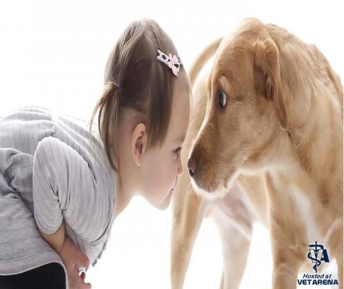 New Study : dogs have intelligence close to that of a 2 years old human